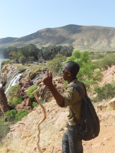 Epupa Falls - Guide