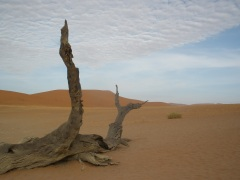 Sossosvlei - Namib Wüste
